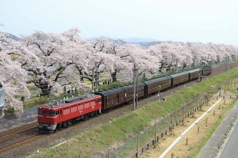 Foto oleh: 鈴木和恵