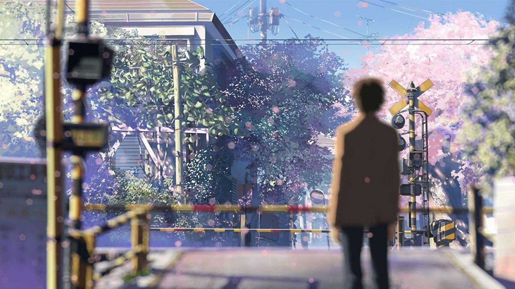 sakura tumbuh di musim gugur