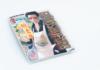 Gokushufudo - The Way of Househusband