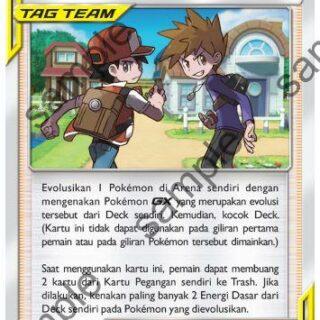 pokemon tag team