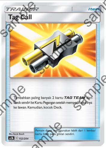 pokemon tag team supporter