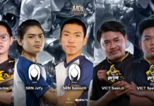 mdl indonesia