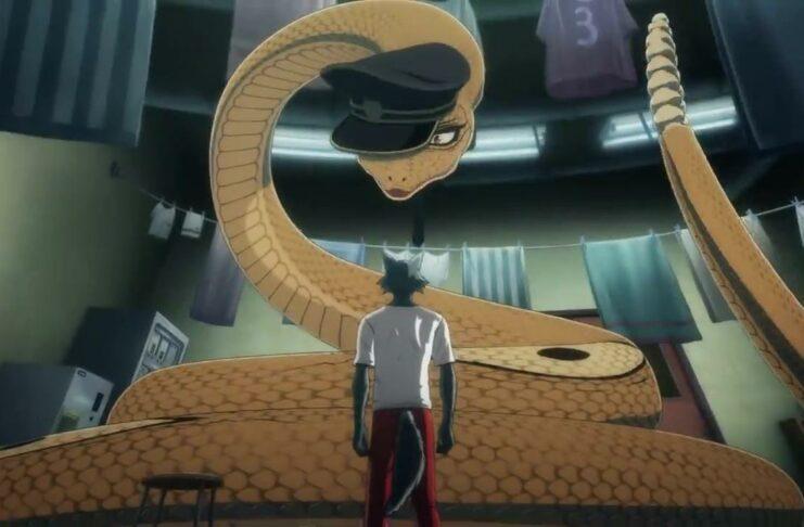 anime beastars 2nd season