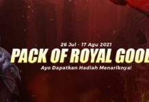 Pack Of Royal Goods